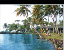 Truk Lagoon Liveaboard or Shore Based Diving???...Best Reviews in Chuuk.